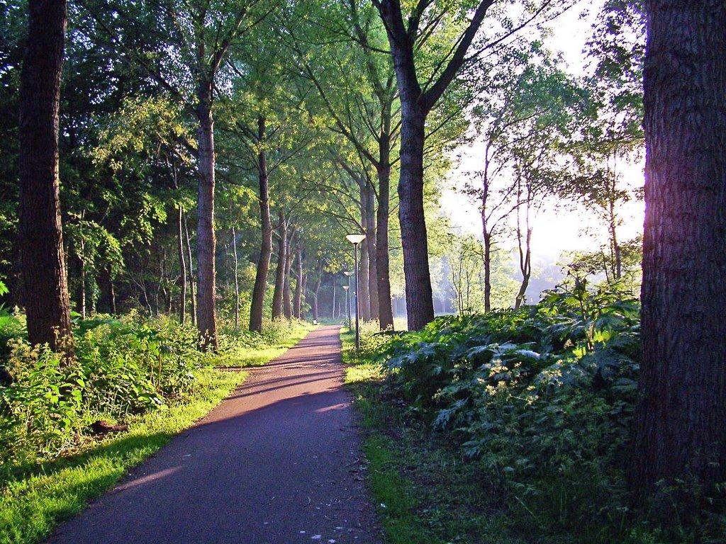 burgemeester-reinaldapark-parkwijk-haarlem-oost