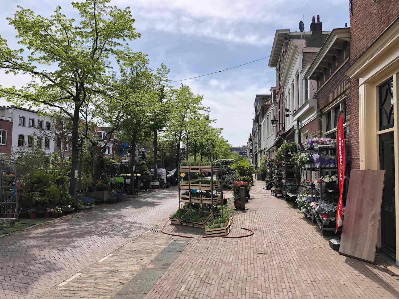 Bloemenmarkt in de burgwalbuurt in Haarlem