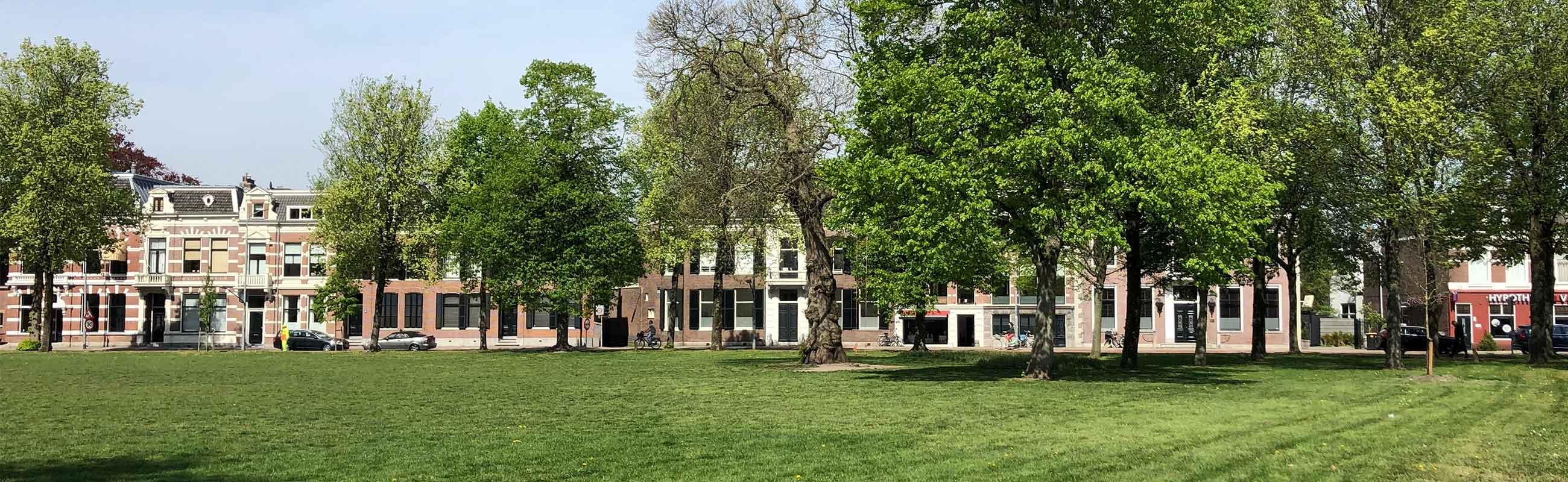 koopwoningen in het Florapark in het Haarlemmerhoutkwartier in Haarlem