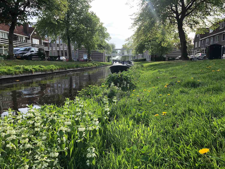 Varen langs de mooie huizen in het Garenkokerskwartier in het Zijlwegkwartier in Haarlem zuidwest