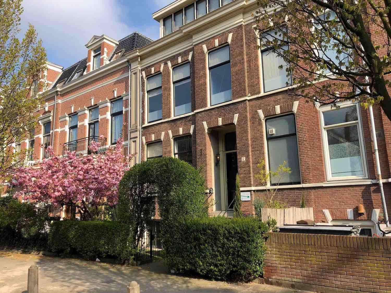 Haarlem Kenaustraat Wonen bomen in Bloesem