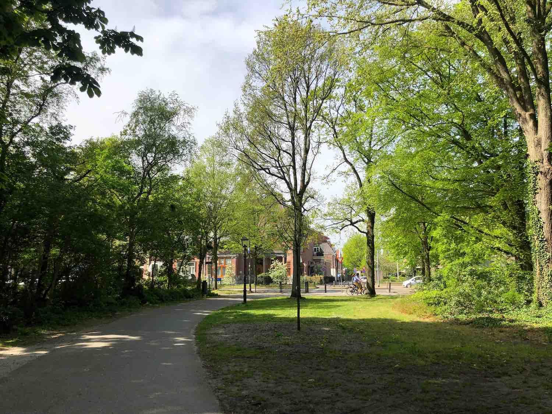 Door de Haarlemmerhout in Haarlem kan je waanzinnig mooi fietsen.