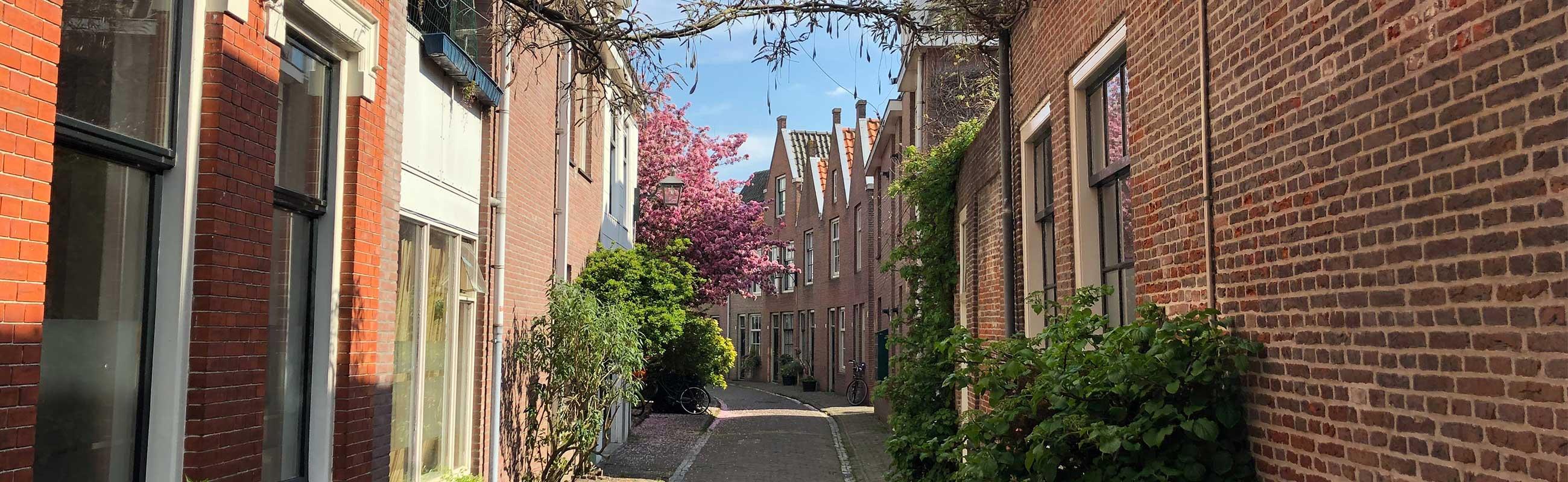 Een van de mooiste hofjes in Haarlem het Brouwershofje in de Heiliglandenbuurt.