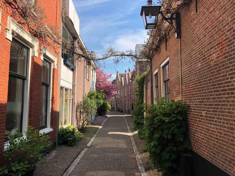 Huurwoningen in het Brouwershofje in de Heiliglandenbuurt in Haarlem