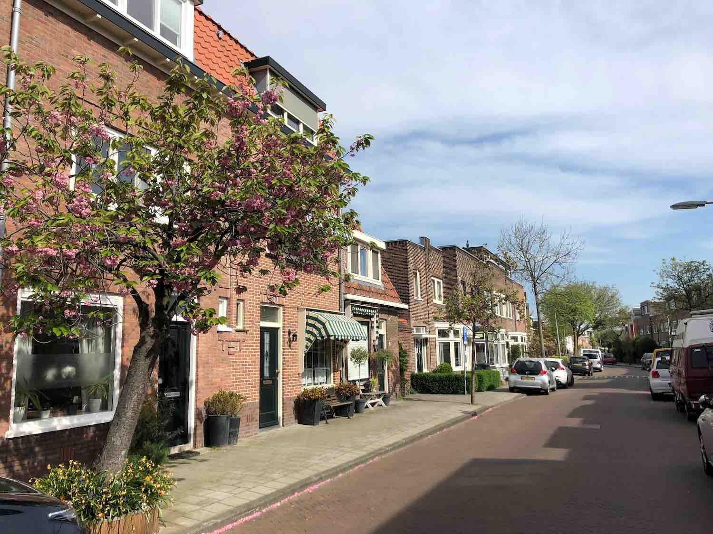 Huur- en koopwoningen in het Houtvaartkwartier in Haarlem zuidwest