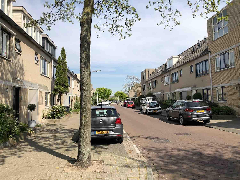 Sociale huurwoningen en huurwoningen in de Koninginnebuurt in de Haarlemmerhoutkwartier in Haarlem