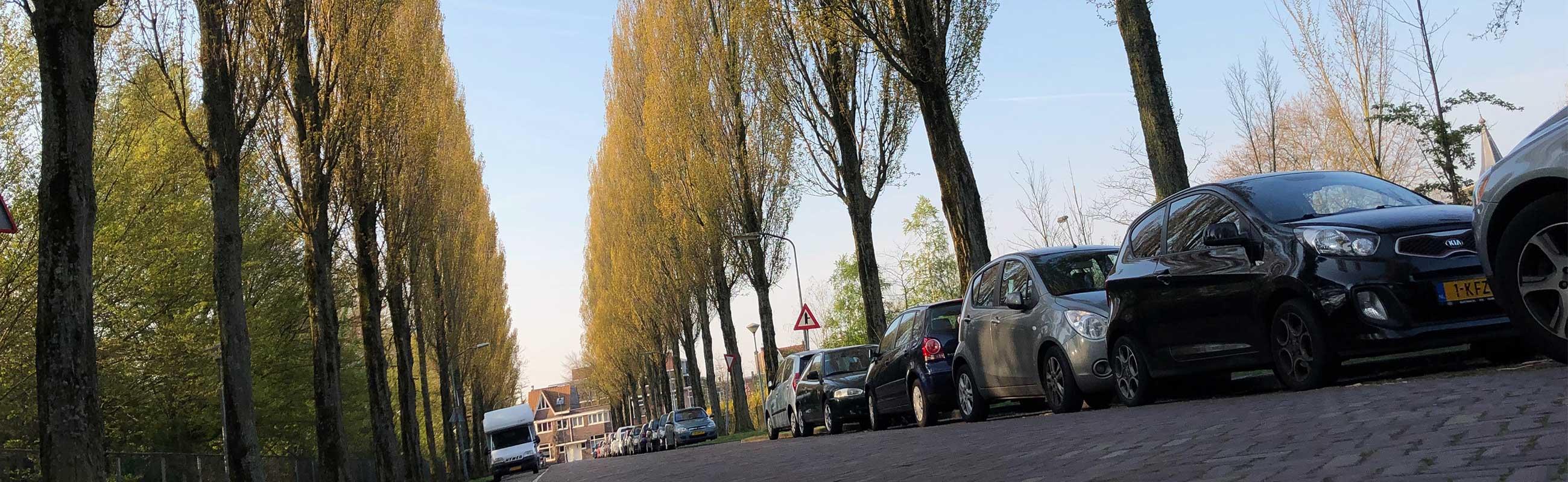 De weektuinbuurt wonen in het Ter Kleefkwartier in Haarlem Noord.