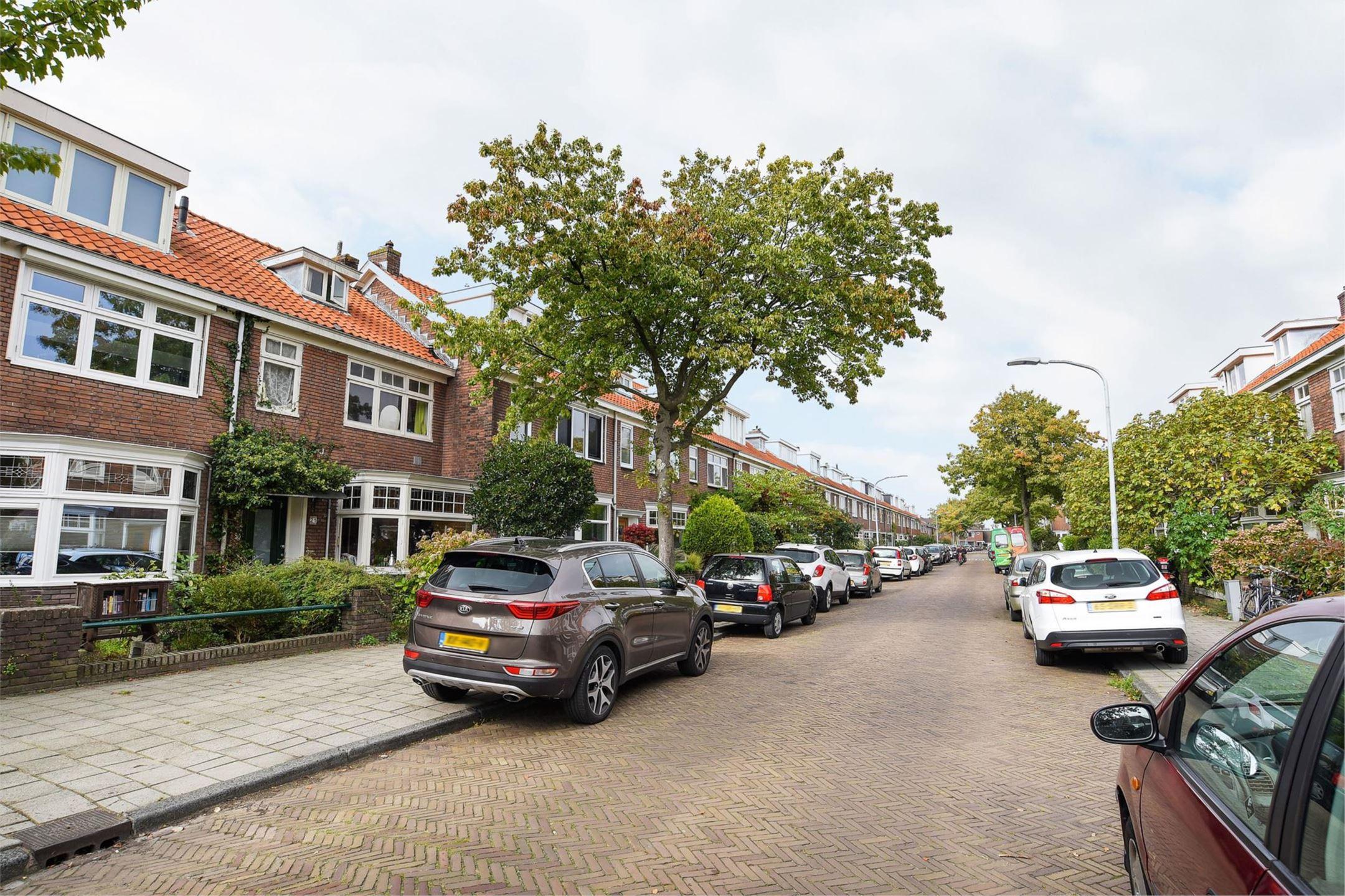 meeuwenbuurt-vogelwijk-haarlem-noord-meeuwenstraat