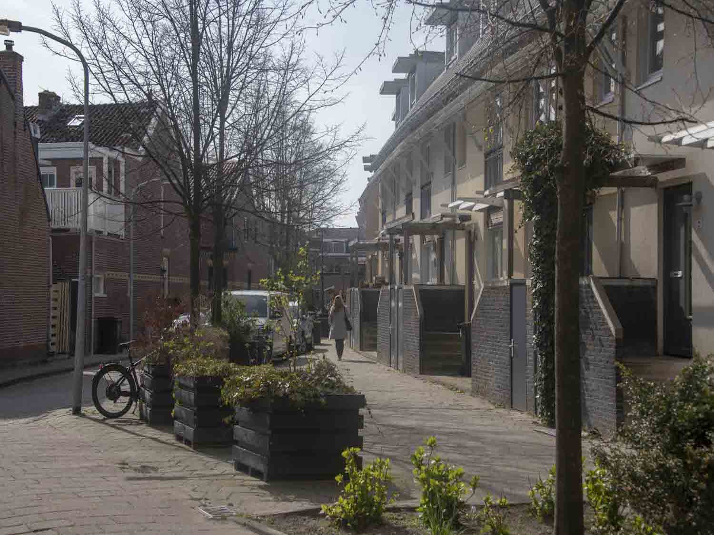 Huurwoningen in het Rozenprieel in Haarlem Zuid in het Haarlemmerhoutkwartier