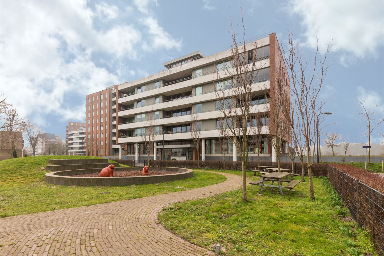 schrijversbuurt-delftwijk-haarlem-noord-flat-harry-mulischstraat