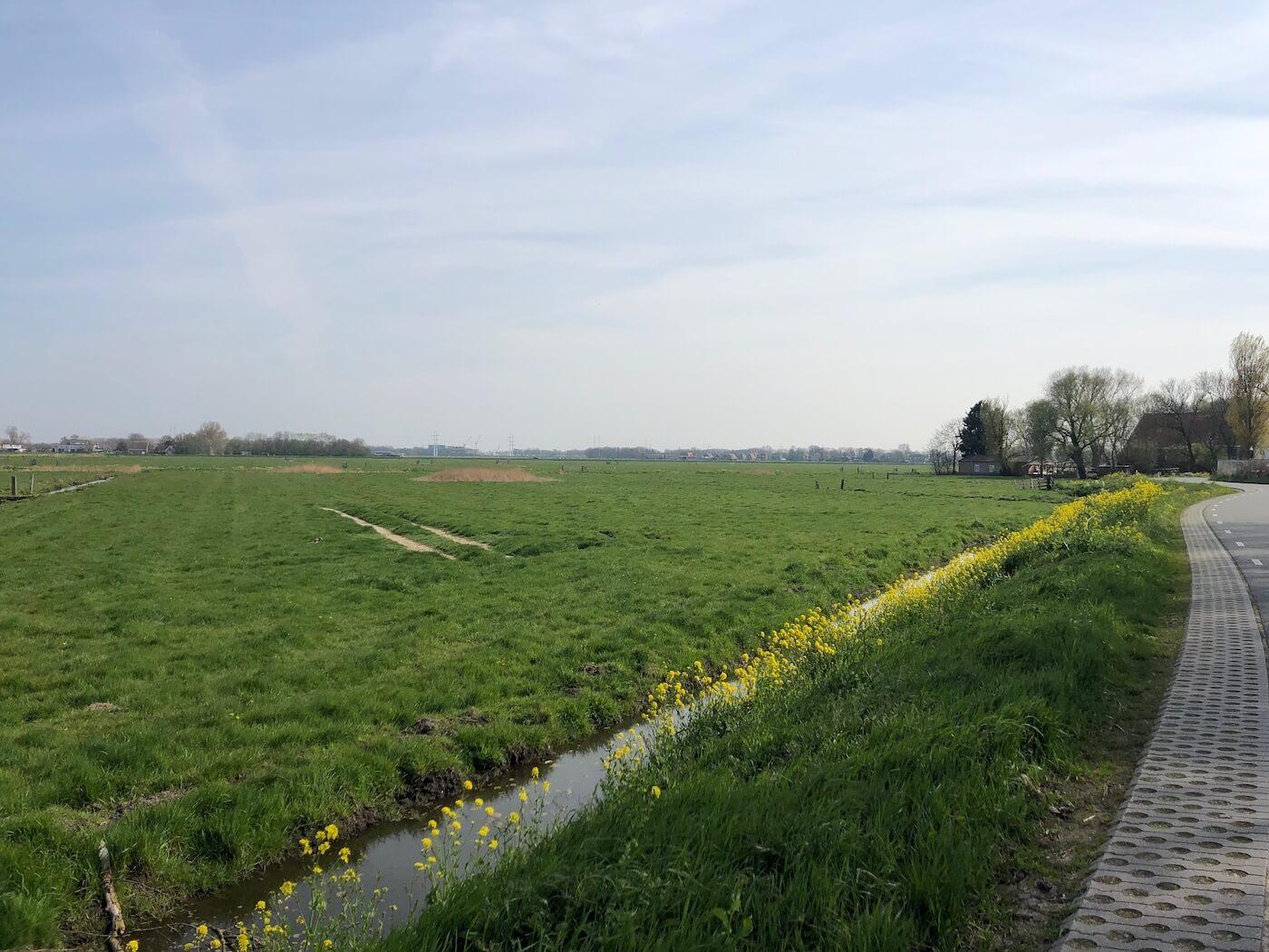 Wandelen in de Veerpolder Waarder en Wandelen in Haarlem oost