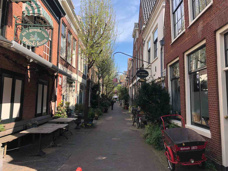 De populaire woonbuurt de Vijfhoek in Haarlem Centrum