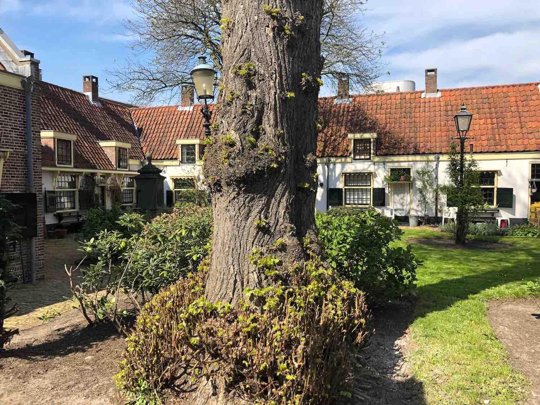 Hofje van het Loo met huurwoningen in het midden van de Vijfhoekbuurt