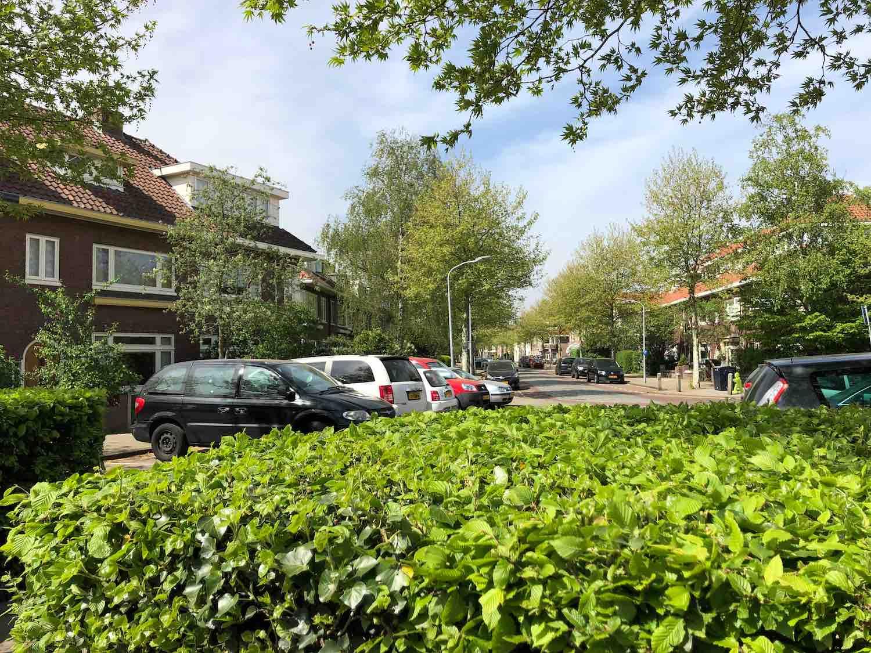 Koopwoningen die te koop staan in de Welgelegen buurt in Haarlem in het Haarlemmerhoutkwartier