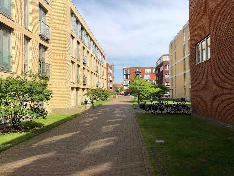 Huurwoningen in de Welgelegen buurt in Haarlem in het Haarlemmerhoutkwartier